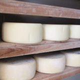 ダイワファーム チーズ熟成庫