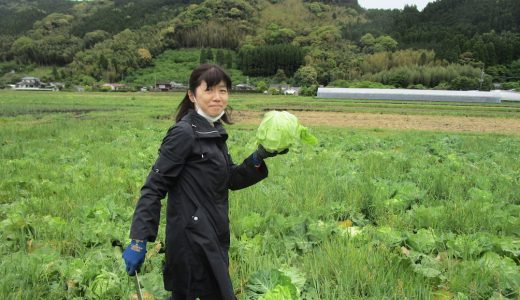 本坊農園で野菜収穫!